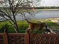 Inde Uttar Pradesh Agra Taj Mahal Mausolee Jawab Singe Vue Yamuna - panoramio.jpg