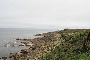 Inishmurray - Southern coast line of Inishmurray