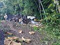 Inundaciones en Costa Rica, octubre de 2011 (12).jpg