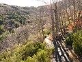 Invierno 2011 en Tejera negra - panoramio (16).jpg