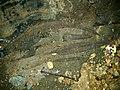 Iron artefacts from Iroungou cave in Gabon.jpg