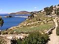 Isla del Sol - panoramio (5).jpg