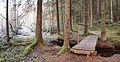 Jääskelä nature trail 11.jpg