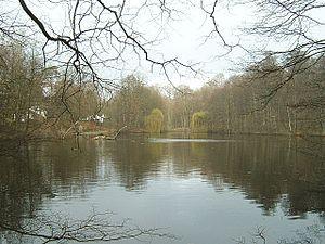Frankfurt City Forest - Image: Jacobiweiher 4