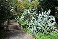 Jardim Botânico Tropical - Lisbon, Portugal - DSC06555.JPG