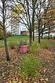 Jardin Pierre-Adrien Dalpayrat @ Paris (30312096894).jpg