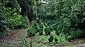 Jardines del conjunto del Generalife 08.JPG