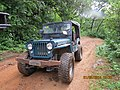 Jeep na trilha da Taquara. - panoramio.jpg
