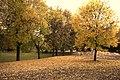 Jesień - panoramio (8).jpg