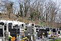 Jewish Cemetery Dolní Lukavice 20.JPG