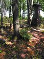 Jewish cemetery Smolevichi 1i.jpg