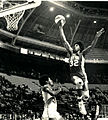 Julius Erving Nets (3).jpeg