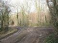 Junction of tracks at the bottom of Sheep Walk - geograph.org.uk - 1690469.jpg