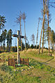 Kříž severně nad vesnicí u zelené turistické trasy do Žďárné, Sloup, okres Blansko.jpg