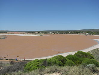 Murchison River (Western Australia) - Murchison River at Kalbarri after heavy rains