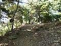 Kaneyama castle sannomon.JPG