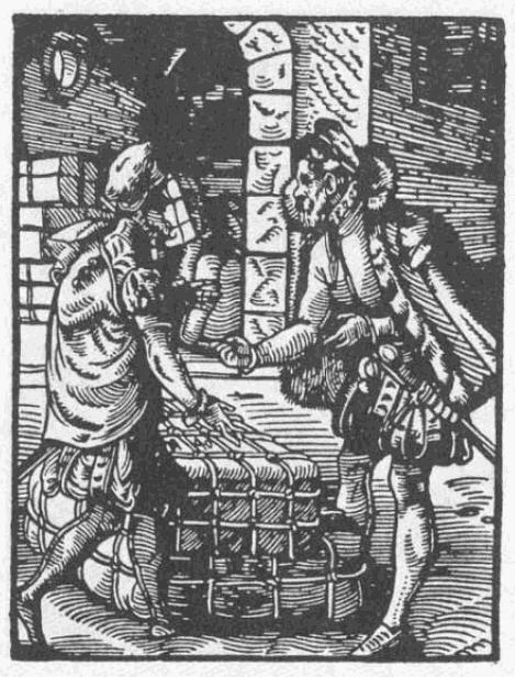 Kaufmann-1568
