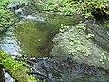 Kavinský potok (8).jpg