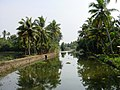 Kerala si03-0757.jpg