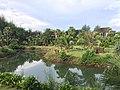 Khok Kloi, Takua Thung District, Phang-nga 82140, Thailand - panoramio (8).jpg