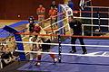 Kick Boxing Brest 09 02 2014 021.JPG