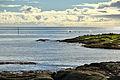 Killer whales at Å i Lofoten 18, 2010 September.JPG