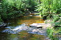 Kitchen Creek looking downstream in Ricketts Glen State Park.JPG