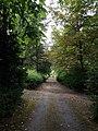 Kloostertuin Heilig Hartklooster, Steyl 17.jpg