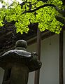 Koyasan 高野山 (Wakayama-Japan) (4951356482).jpg