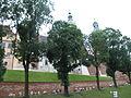 Kraków 012.jpg