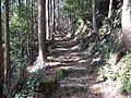 Kumano Kodo Dainichigoe World heritage28.JPG