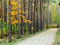 Kyiv Sovky Park20.JPG