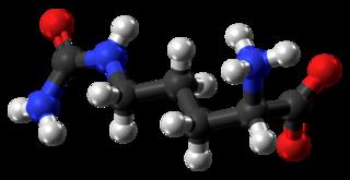 Citrulline chemical compound