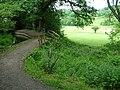Ladderedge Footpath - geograph.org.uk - 452285.jpg