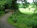 Ladderedge Footpath - geograph.org.uk - 452285.jpg