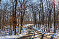 Lake Maria State Park in Winter, Minnesota (23553011423).jpg