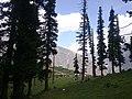Lalazar North Pakistan.jpg