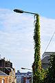 Lamp post France.jpg