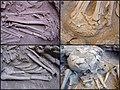 Lapa do Santo - Sepultamento 1 - Detalhes pé pulso perna.jpg