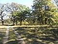 Laudonov Gaj - panoramio (2).jpg