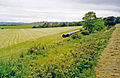 Lauriston station site geograph-3745555-by-Ben-Brooksbank.jpg