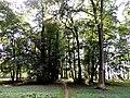 Leśmierz, park przyfabryczny-003.JPG