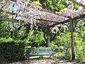 Le bois de Boulogne, Paris - panoramio (3).jpg