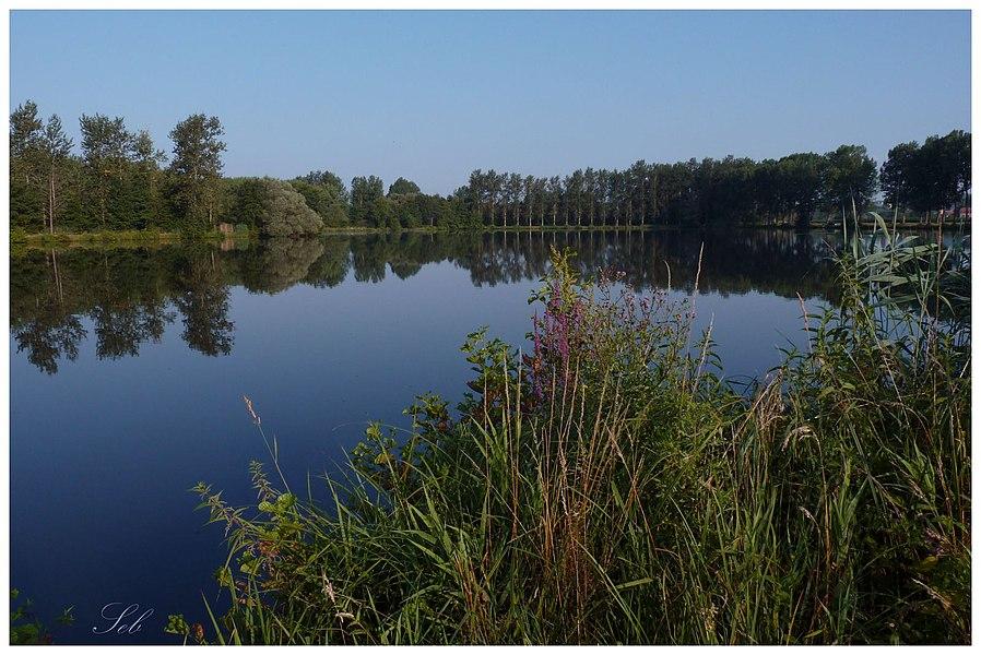 Les étangs Thirier