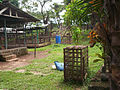 Limbe primate rescue centre cages.JPG