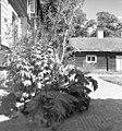 Linnés Hammarby - KMB - 16001000017199.jpg