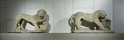English: LionFrançais: Lion posant la patte gauche sur la tête d'un bovidé
