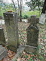Ljutovnica, Groblje, 08.JPG