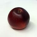 Lobo (apple).jpg