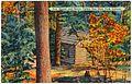 Log chapel and grove, Turkey Run State Park, Indiana (65402).jpg